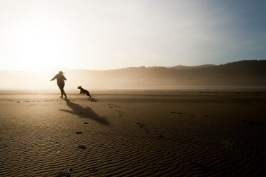 Dog Playing on the Beach (Credit - Pxhere)